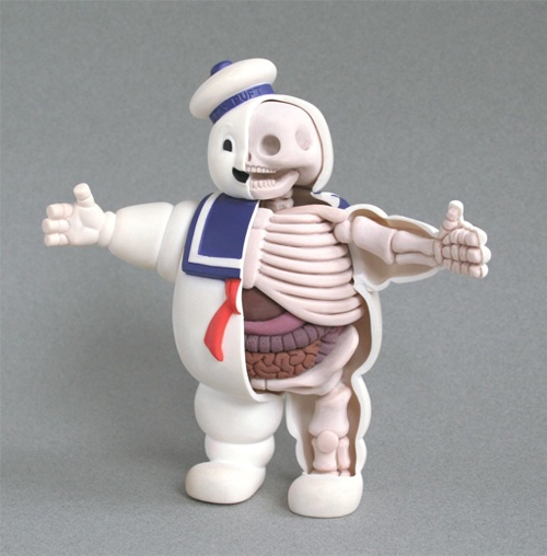 anatomical stay puft marshmallow man