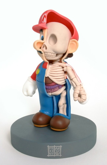 freeny mario anatomy sculpture