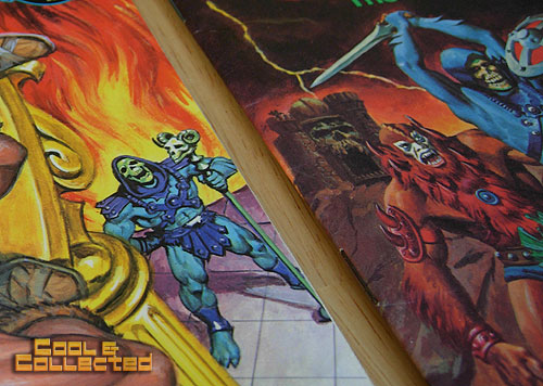 Skeletor and heman on the cover of a masters of the universe children's book