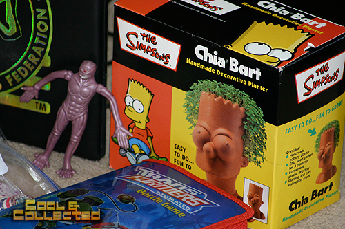 yard sale finds - Chia head Bart Simpson