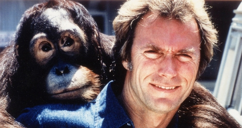 top 10 monkey movies Every Which Way but Loose