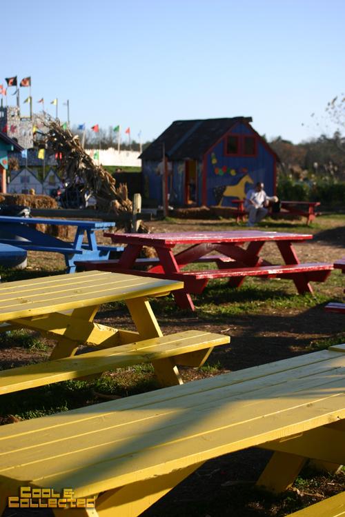cox farms picnic area