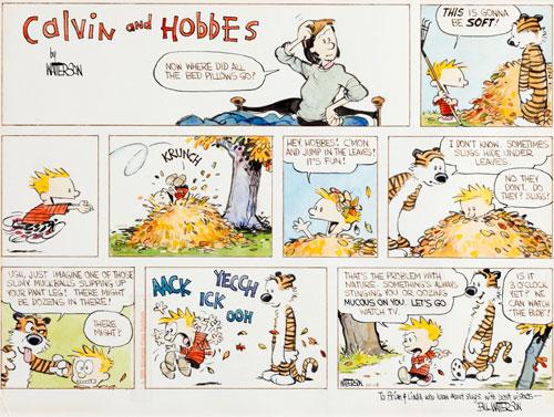calvin and hobbes sunday strip artwork